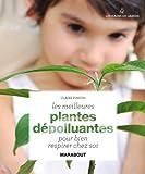 Les meilleures plantes dépolluantes pour bien respirer chez soi