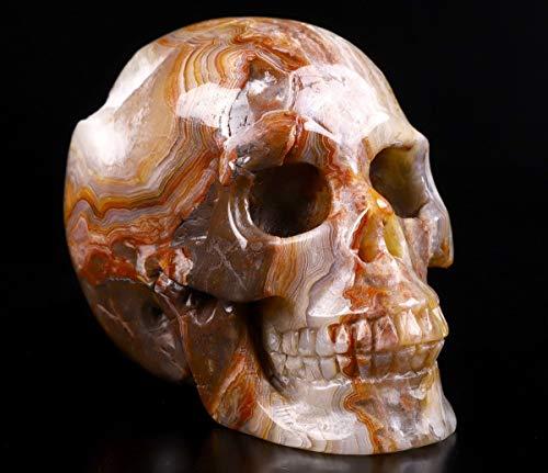 "Skullis 3.0"" Red Crazy Lace Agate Crystal Skull, Hand Carved Gemstone Fine Art Sculpture, Reiki Healing Stone Statue."