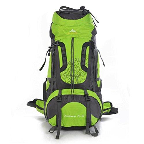 GAOHAILONG 80L Alpinisme Professionnel Sacs à Dos de Grande capacité Sacs de Voyage Porter étanche, Green