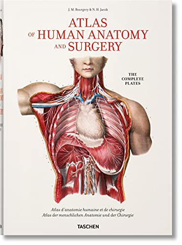 Bourgery. Atlas of Human Anatomy and Surgery: FP