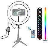 PAN Maquillaje Video Transmisión en directo, 140,7 centímetros redondo base de montaje Desktop + 10.2 pulgadas 26 centímetros LED anillo Vlogging luz vídeo Kit con pie fijo trípode cabeza de bola & P