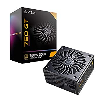 EVGA Supernova 750 GT 80 Plus Gold 750W Fully Modular Auto Eco Mode with FDB Fan 7 Year Warranty Includes Power ON Self Tester Compact 150mm Size Power Supply 220-GT-0750-Y1