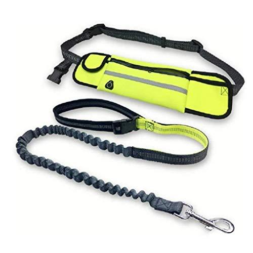 XZJJZ Correa elástica para manos libres duradera, cinturón reflectante ajustable de bolsillo, con correa para mascotas, adecuado para mascotas medianas y grandes