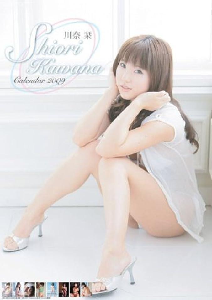 川奈栞 2009年カレンダー