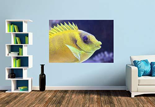 Premium Foto-Tapete Im Meeres-Aquarium (versch. Größen) (Size S | 186 x 124 cm) Design-Tapete, Wand-Tapete, Wand-Dekoration, Photo-Tapete, Markenqualität von ERFURT