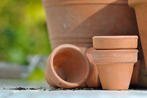 10L terracotta impregnering natuursteen, zandsteen, terracotta impregneren verzorging voor plantenpotten, plantenpotten, potten, plantenpotten