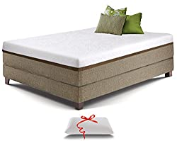 q? encoding=UTF8&ASIN=B016DSJ0S0&Format= SL250 &ID=AsinImage&MarketPlace=US&ServiceVersion=20070822&WS=1&tag=balancemebeau 20 - Best Mattress for Side Sleepers