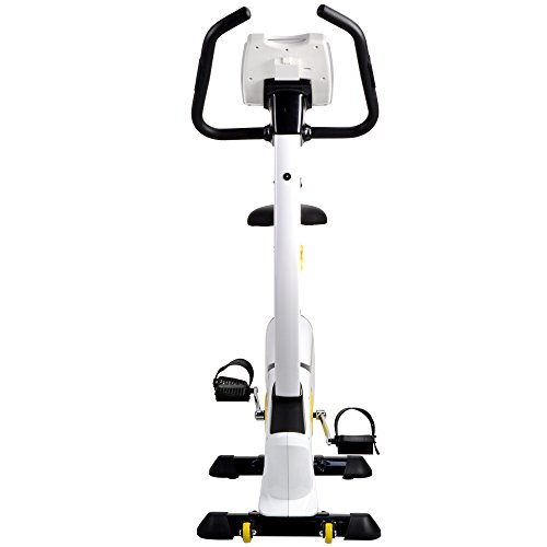 L NOW Indoor Upright Bike Cycling Bike Exercise Bike Stationary D808 with Belt Drive, 8-Level Adjustable Magnetic Resistance, Wide Soft Cushion, LCD Display Smooth and Quiet