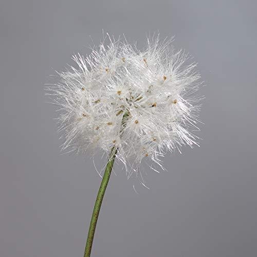 Pusteblume 80cm DP Kunstblumen künstliche Blumen künstliches Pusteblumengras