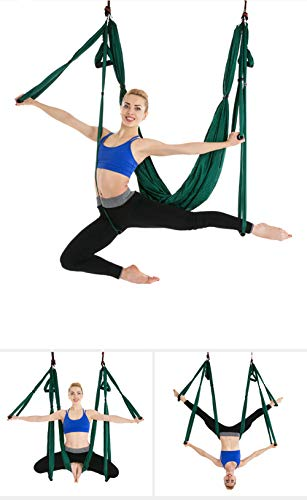 Aerial Yoga Swing Set Yoga Hammock Trapeze Sling Kit Inversion Tool Antigravity Ceiling Hanging Yoga Sling Inversion Swing for Professional Beginners amp KidsDarkGreen