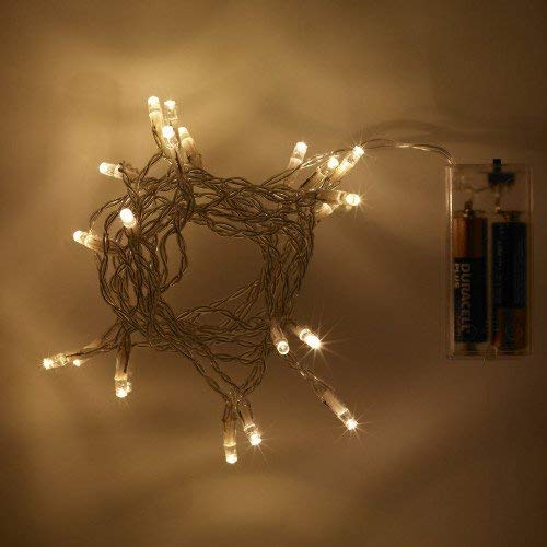 eBuzz Battery Operated Fairy Lights with 20 Warm White LEDs (Warm White)
