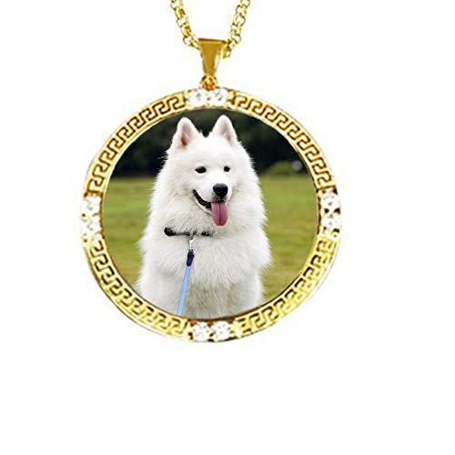 TWinkle Personalisierte Foto Kette Anhänger,Haustier/Katze/Hund Foto Anhänger,Damen Herren Halskette mit Foto/Bild und Text 925 Sterling Silber(Gold-16)