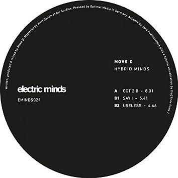 Hybrid Minds