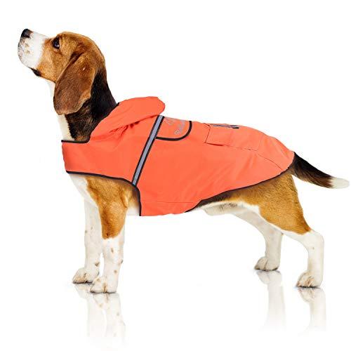 Bella & Balu Hunderegenmantel – Wasserdichter Hundemantel mit Kapuze und Reflektoren für trockene, sichere Gassigänge, den Hundespielplatz und den Urlaub mit Hund (M | Orange)