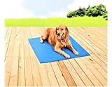 PAWSLIFE Cooling Mat for Dogs - Pressure Activated Gel Dog Cooling Mat - No Need to Freeze Or Refrigerate This Cool Pet Pad - Keep Your Pet Cool, Use Indoors, Outdoors or in The Car XL (37x31)