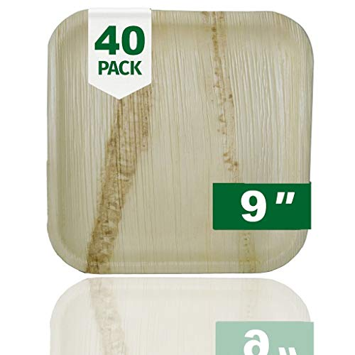 Palm Naki Square Palm Leaf Plates (40 Count) - Disposable Dinnerware, Compostable and Biodegradable Plates (9' Plates)
