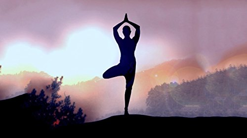 『Yoga TV』の14枚目の画像