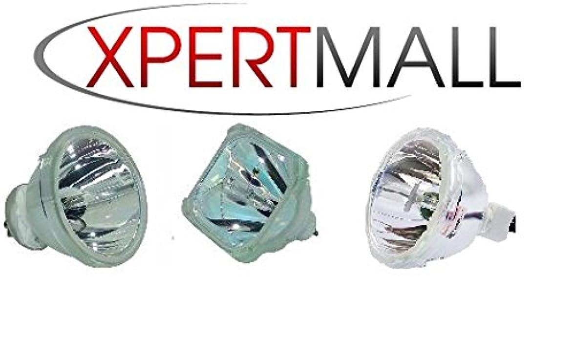 手錠スケッチクールXpertMall ベア電球 Planar 997-3345-00用