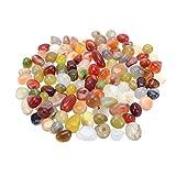DENGZ Decorativo Pulido, Piedra Decorativa para macetas, Acuario, Maceta, paisajismo, Rellenos de jarrón, 0,8-1,2 cm, 450 g