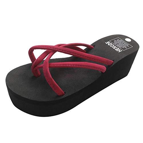 Sylar Zapatillas de Estar por Casa,Chanclas para Mujer Verano Zapatillas Fondo Grueso Zapatos Antideslizantes Sandalias Suela Cómoda Suave