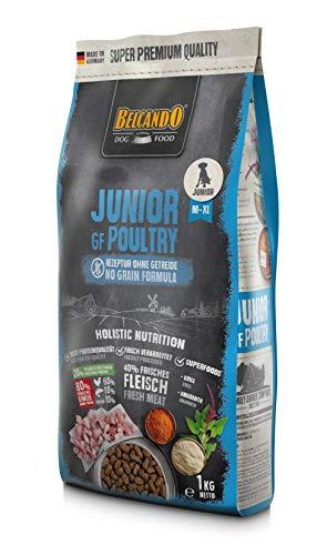 Belcando Junior GF Poultry [1 kg] getreidefreies Hundefutter | Trockenfutter ohne Getreide für Junge Hunde | Alleinfuttermittel für Hunde ab 4 Monaten