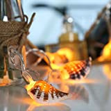 batteriebetriebene Muschel Lichterkette, 10 LEDs warmweiß, echte Muscheln, 1,5m, von Festive Lights - 6