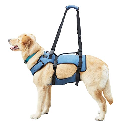 Coodeo Dog Lift Harness, Support & Recovery Sling, Pet Rehabilitation Lifts Vest Adjustable Breathable Straps for Old, Disabled, Joint Injuries, Arthritis, Paralysis Dogs Walk (XLarge)