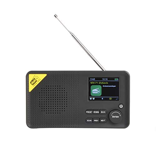 Rechargeable Portable Multifunctional Radio, DAB/DAB+/FM Receiver Bluetooth Digital Radio Player, 2.4inch LCD Display Fashionable for Home Office Travel Sport Learning