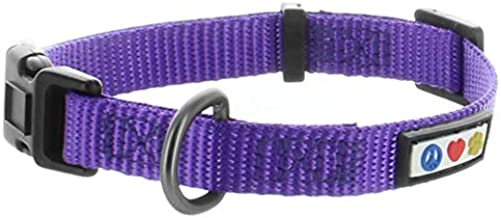Pawtitas Dog Collar for Small Dogs Training Puppy Collar with Solid - S - Purple
