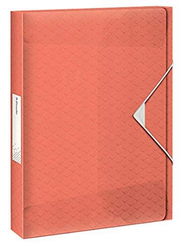 ESSELTE 626258 - Carpeta de proyectos COLOUR'ICE PP lomo 25 mm DIN A4 color albaricoque