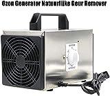 Generador de ozono removedor de Olor Natural purificador de Aire Confort Limpiador Comercial de Acero Inoxidable Desodorante y esterilizador Profesional de ozonizador - 10g