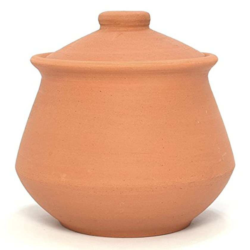 Indian Clay Yogurt Pot - Small