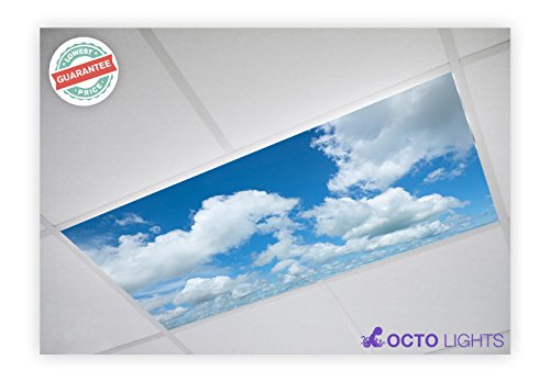 Cloud 002 2x4 Flexible Fluorescent Light Cover