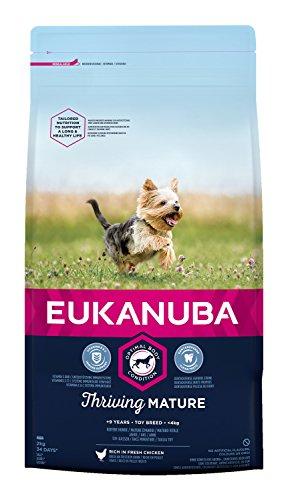 Eukanuba hondenvoer voor zeer kleine rassen, premium droogvoer met vers kip, verschillende leeftijden, 2 kg, Band, 2 kg, kan variëren