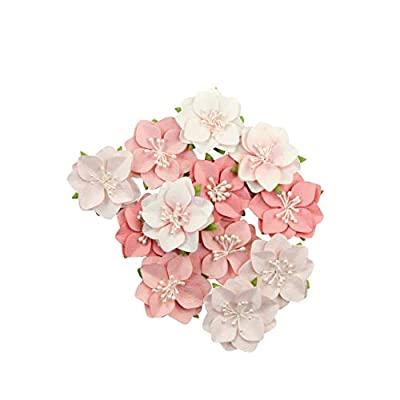 Prima Marketing Mulberry Paper Flowers-Ripe Berry/Fruit Paradise, 12/Pkg