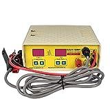 BAOSHISHAN Electro Fisher Ultraschall-Inverter-Fisch-Ausrüstungs-elektrischer Impuls-Fischen-Maschinen-Fisch-Schocker-Stunner
