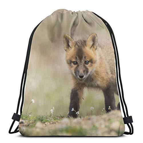Affordable shop Fox Fox Fox - Mochila con cordón, ligera, para gimnasio, viajes, yoga, informal, para senderismo, natación, playa