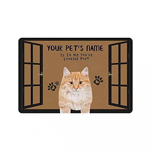 Felpudo De Entrada Nombre Y Foto De La Mascota Felpudo Antideslizante Decoración Personalizada para El Hogar Regalo Ventana Perro Gato