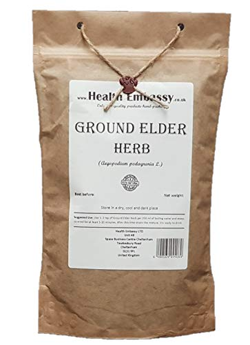 Health Embassy Giersch Kraut Tee (Aegopodium Podagraria L.) /Ground Elder Herb Tea, 50g