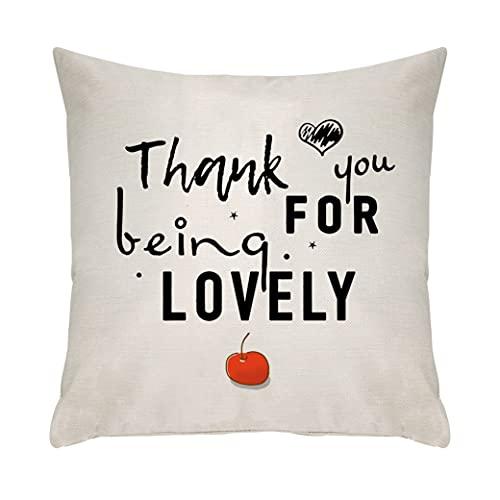 Ameesi Funda de cojín para regalo de agradecimiento para amigos de la familia, funda de cojín para papá, mamá, abuela, novia, mejor amiga, hermana, regalo de cumpleaños (106)