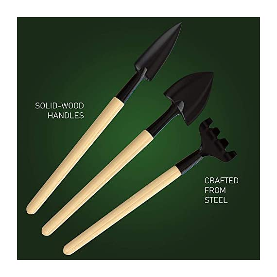 """Premium Bonsai Tool Kit + Bonsai 101 Book - Set Includes: Wooden Rake, Long & Wide Spades, Scissors, Tweezers, Bamboo… 2 Everything you need to care for your bonsai, in one stylish case: pruning shear and scissors to cut twigs, smaller branches, leaves or roots easily. Pair of tweezers to remove dead leaves, insects, weeds and other fine debris. Bamboo brush to enhance your bonsai tree, bamboo rake to plane or rake the surface of the soil when repotting, and 2 spades (long & wide). Includes best selling book """"bonsai: 101 essential tips"""" by bonsai expert Harry Tomlinson (DK Publishing), with 72 full color illustrated pages. Everything you need to know about bonsai care, maintenance, design, and arrangement. With clear explanations of bonsai and what it is, these 101 easy-to-grasp tips have everything you need to get the results you want. Premium quality: Everything is made with only the finest steel and bamboo, as you would expect from the Planters' Choice brand. And it comes neatly packaged in a stylish storage case so that it makes a great gift for your friend or family."""