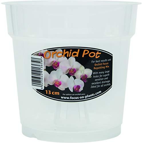 Maceta Transparente para orquídeas 13 cm
