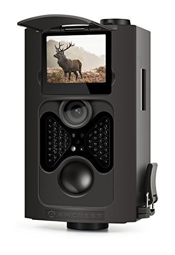Amcrest 720P HD Game and Trail Camera - 8MP Dynamic Capture, Integrated 2' LCD Screen,...