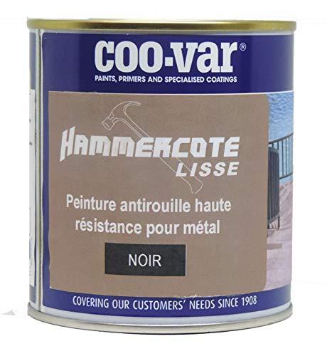 Coo-Var Peinture métal antirouille lisse - extérieur et intérieur - Noir 500ml