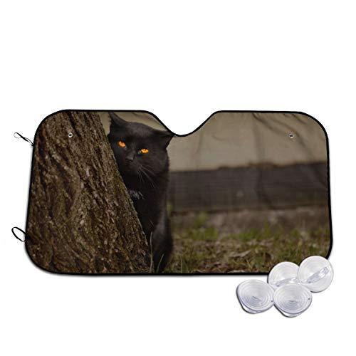 Kat gele ogen verbergen achter de Trunk voorruit zon schaduw vizier voorzijde venster glas voorkomen dat de auto van verwarming tot binnen op maat