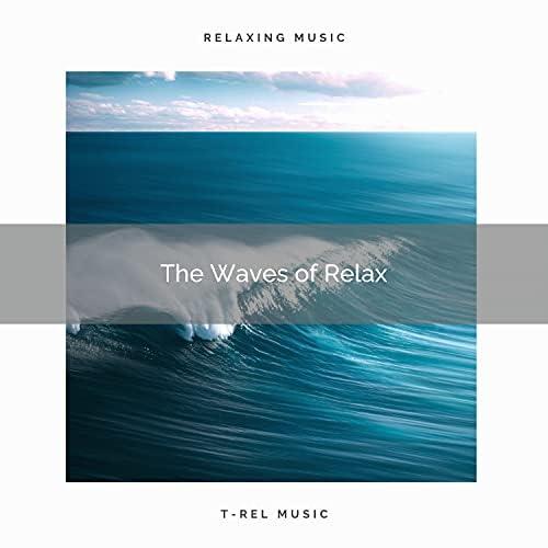 Ocean Sleep Sounds & Nature Music Nature Songs