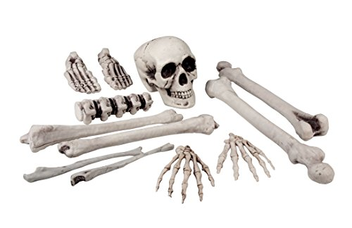 Set 12 pezzi teschio e ossa