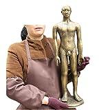 LUCKFY Modelo de acupuntura Humana - Modelo anatómico de acupuntura Masculina - Modelo de anatomía Humana de Cobre Puro para Aprender meridianos y acupuntos, 60 cm / 23.6 Pulgadas