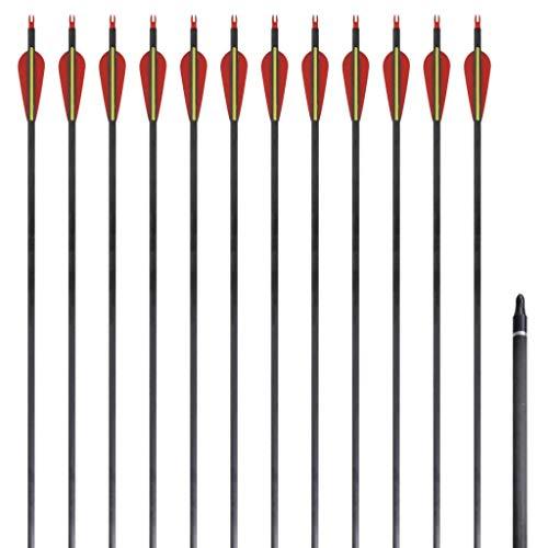 vidaXL 12x Flechas para Arco Estándar 30' 0,76cm Fibra de Vidrio Tiro de Polea