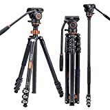 Kit monopiede treppiede video professionale, Cayer AF2451 Cavalletto treppiede telescopico...